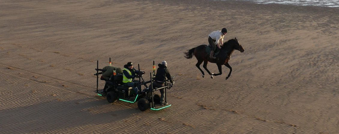 Race Horse on the beach drone video
